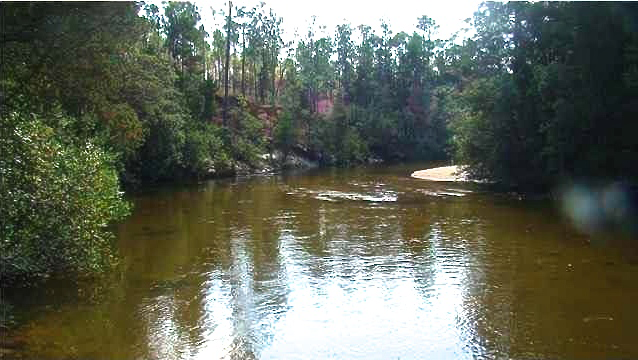 Hidden Creed is set in FLorida's Blackwater Creek State Park.