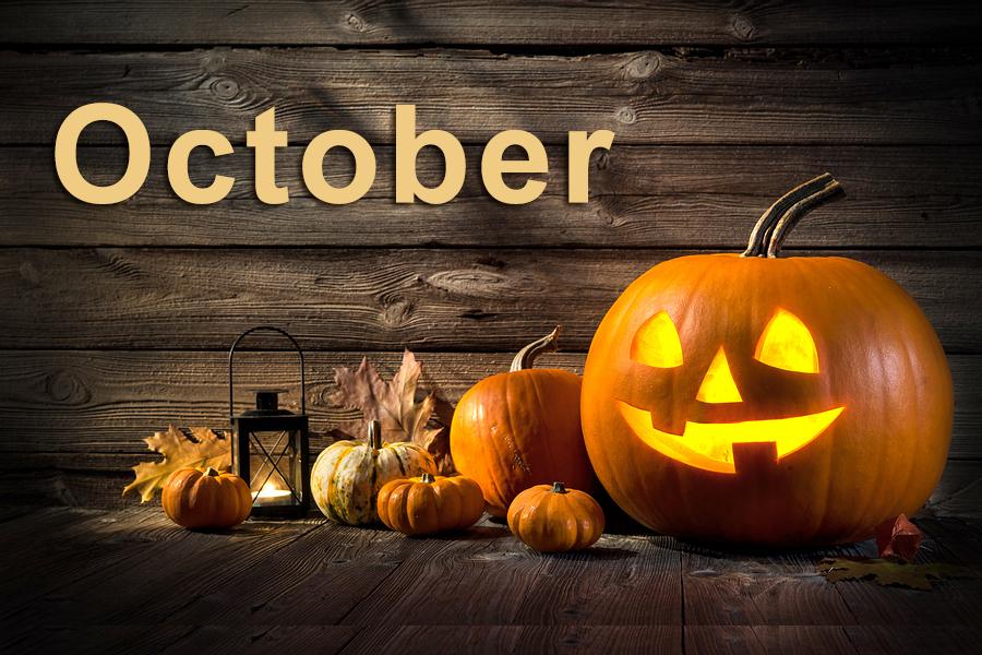 October 2020 VIR Club Newsletter